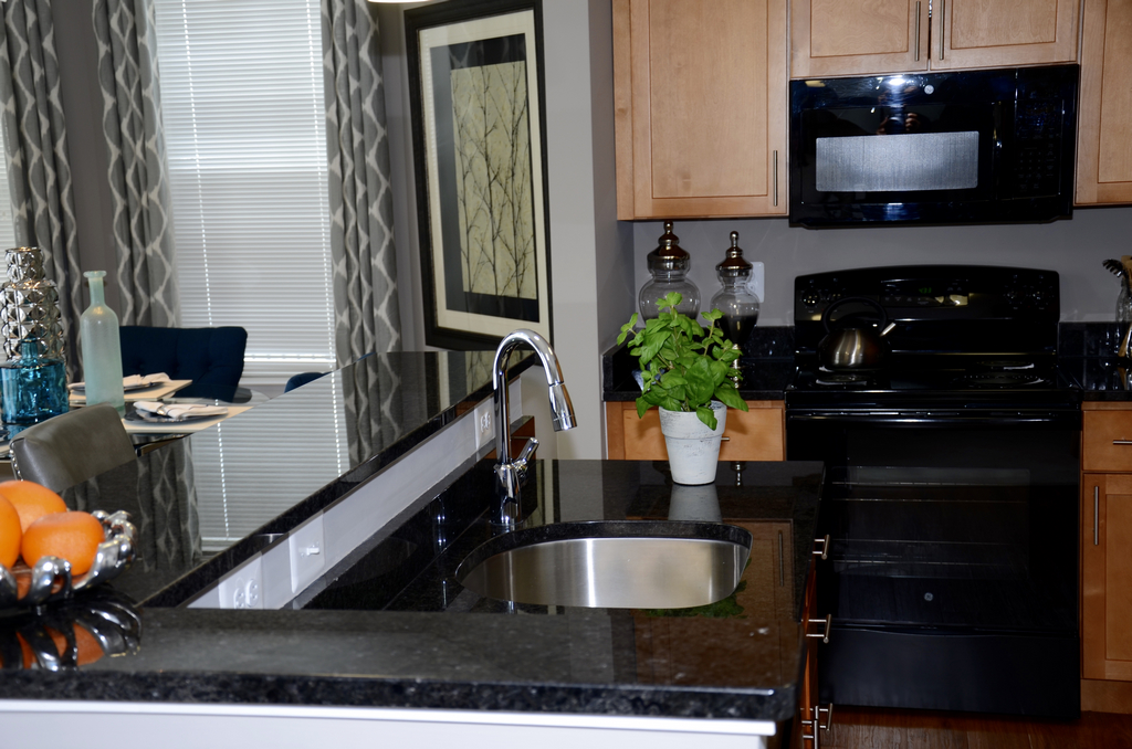376 Units In Frederick Maryland. Granite Countertops For Kitchen Only.